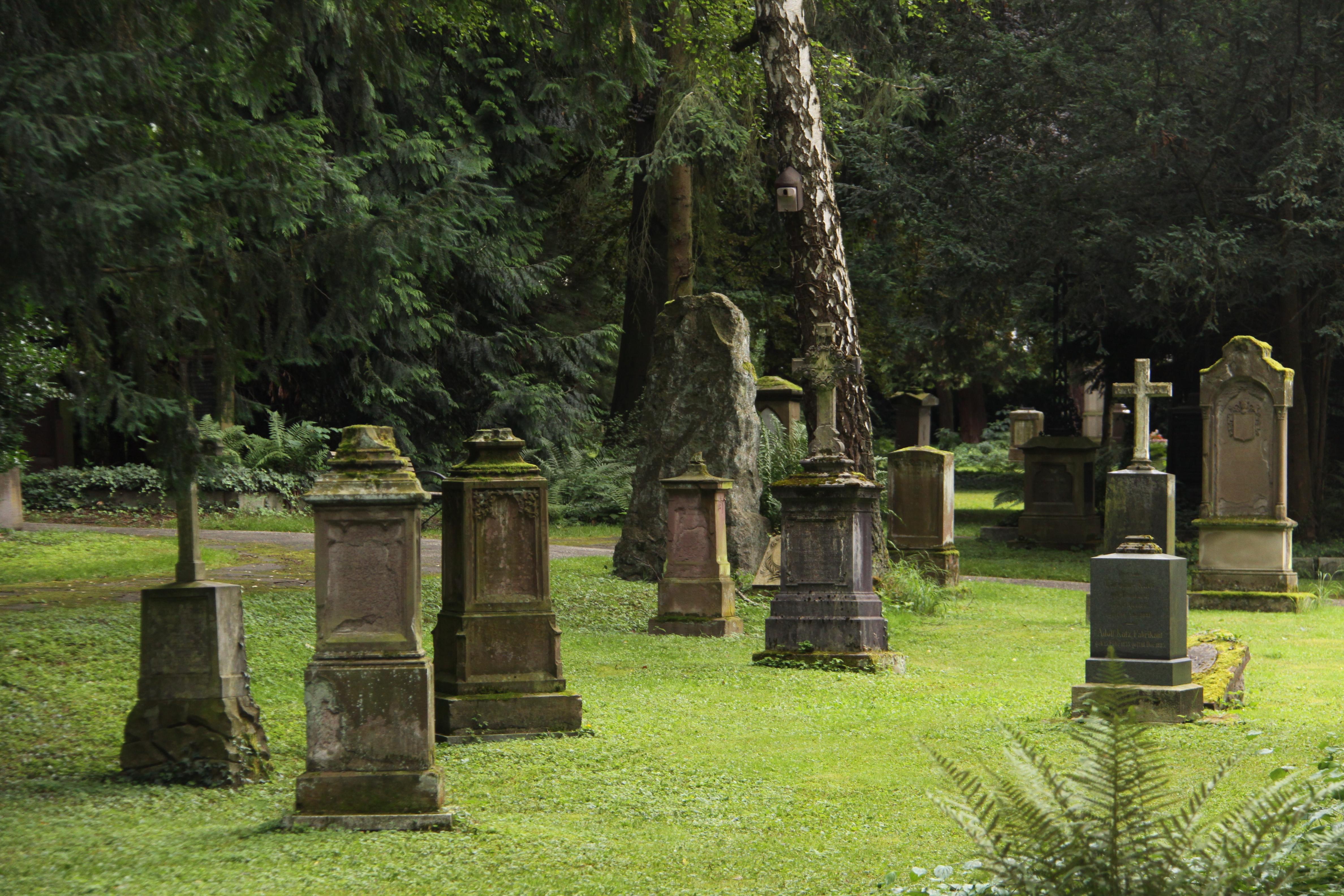 Alter Friedhof in Ludwigsburg. Foto: Uwe Roth