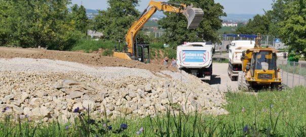 Die Feuerbacher Heide am Wohngebiet Killesberg in Stuttgart wird aufwendig für Eidechsen umgestaltet, die im Neckartal Stuttgart 21-Baustellen weichen müssen. Foto: Uwe Roth
