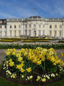 Saisoneröffnung 2019: Frühlingsblumen vor der Südfassade des Barockschlosses Ludwigsburg. Nach dem Krieg wuchsen dort Kartoffeln. Foto: Uwe Roth
