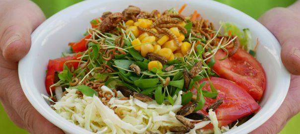 Insekten als Salat-Topping. Foto: Uwe Roth